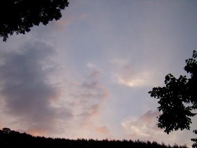 P6290004-1.jpg